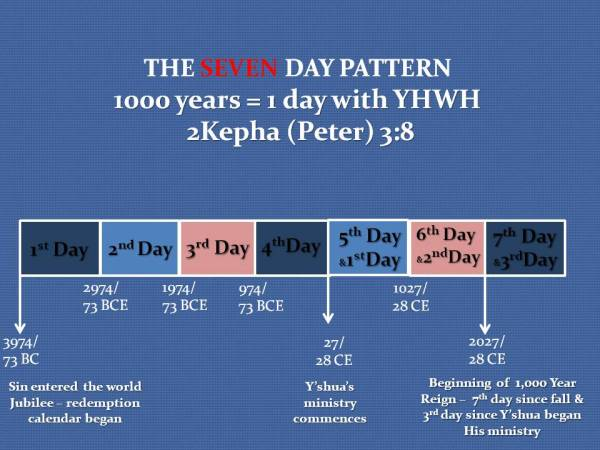 THE SEVEN DAY PATTERN GRAPH CHART