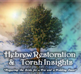 Hebrew Restoration & Torah Insights